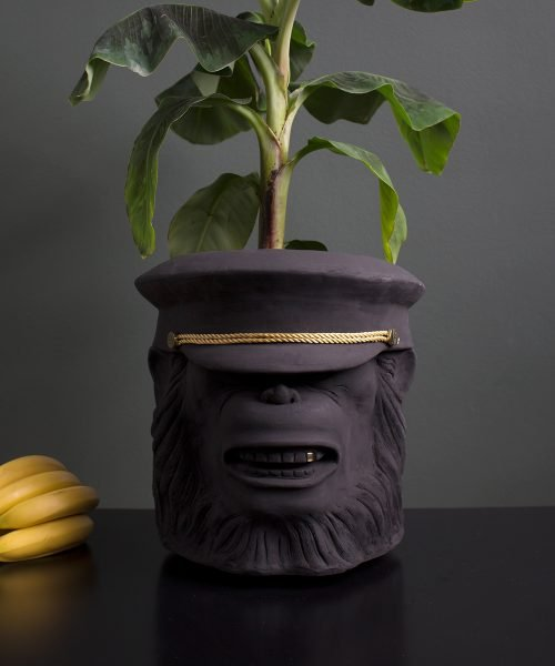 monkey face pot with flower