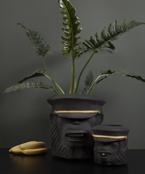 monkey-face-small-pot-3