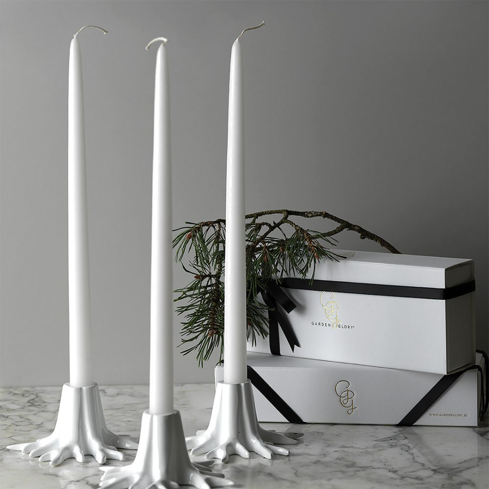 white candle holder root